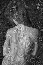"""série """"Arbor Essence"""", Isabelle Levistre, courtesy Little Big Galerie"""