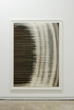 Dove Allouche - Sunflower_13, 2015, étain et argent pur sur papier Cibrachrome, 197 x 144 cm (encadré) - Courtesy Fondation d'entreprise Ricard
