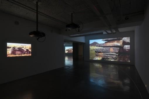 thumbnail_© Martin Argyroglo - Exposition Deux mille quinze de Mark Geffriaud%2c le plateau%2c 2016_01