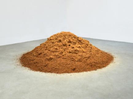 Caroline Le Méhauté, Négotiation 57 - Grow, Grow, Grow, 2013, terre de coco, Dimensions variables. Courtesy de l'artiste et H Gallery, Paris.